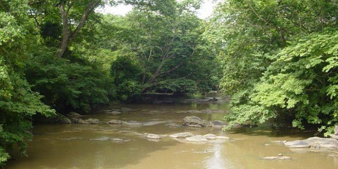Osun-River